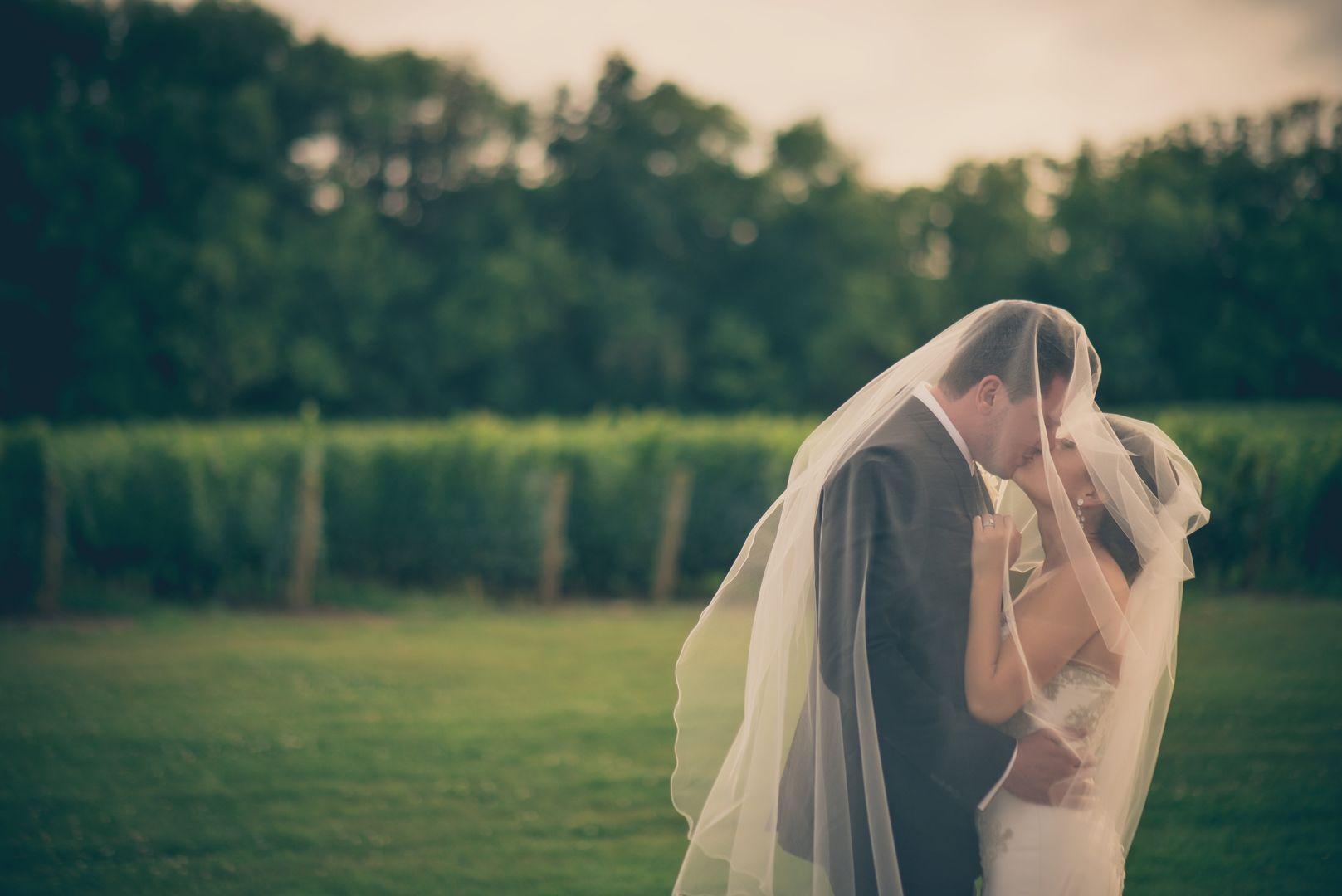 Kiss Vineyard